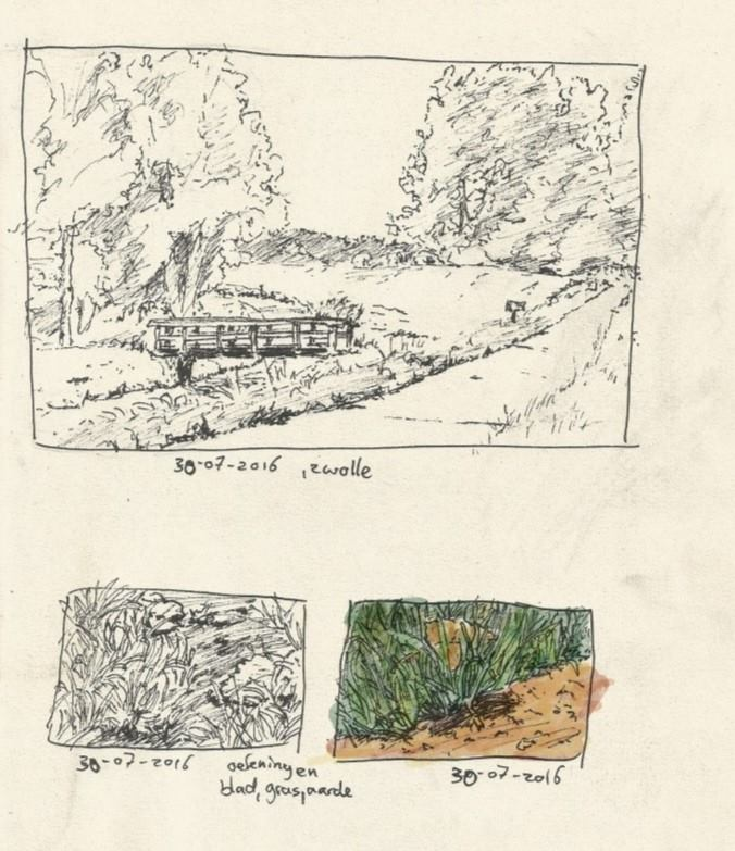 Zwolle nature drawings 2