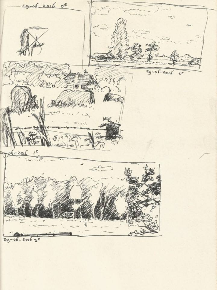 Zwolle nature drawings 1